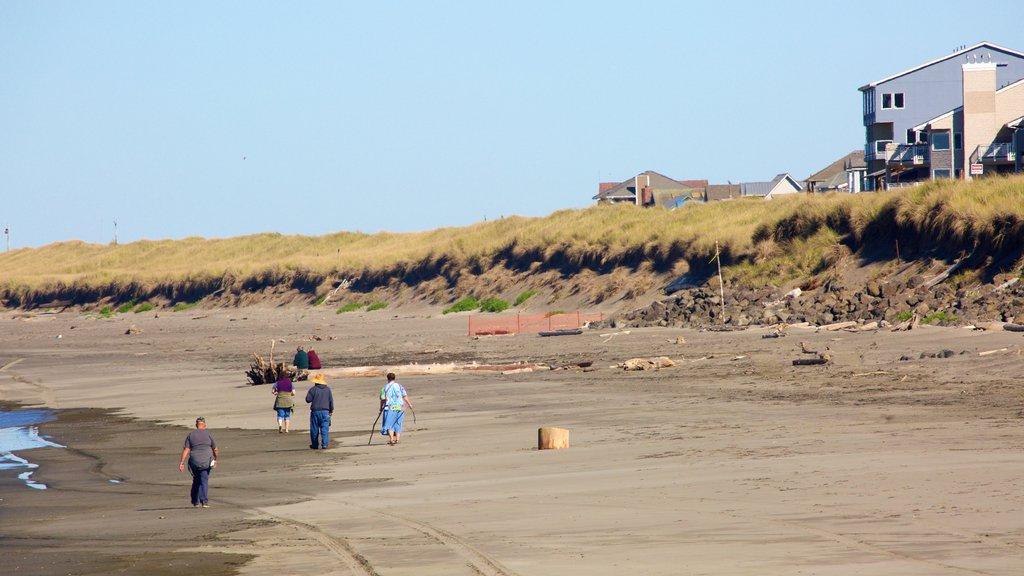 Ocean Shores Beach showing a sandy beach