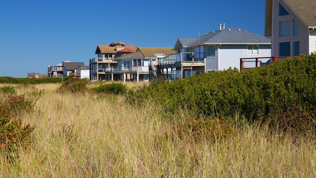Ocean Shores featuring a coastal town