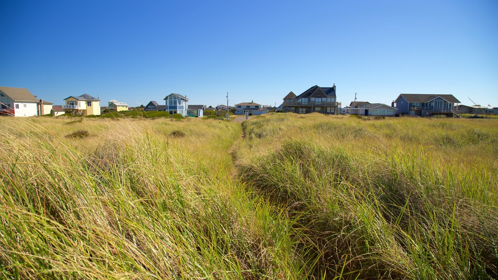 Ocean Shores showing general coastal views, a coastal town and a house