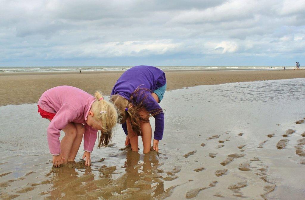 Beach-Kids_Pixabay (1).jpg