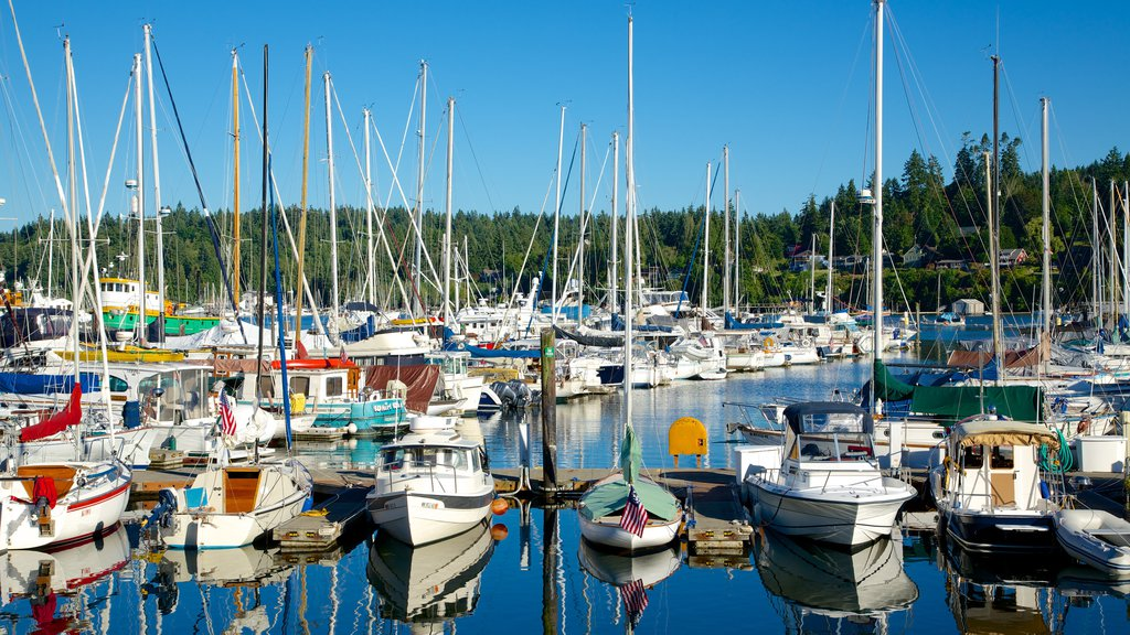 Bainbridge Island showing a marina, forest scenes and a bay or harbor