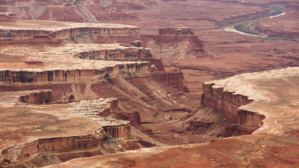 Canyonlands National Park which includes a gorge or canyon, desert views and landscape views