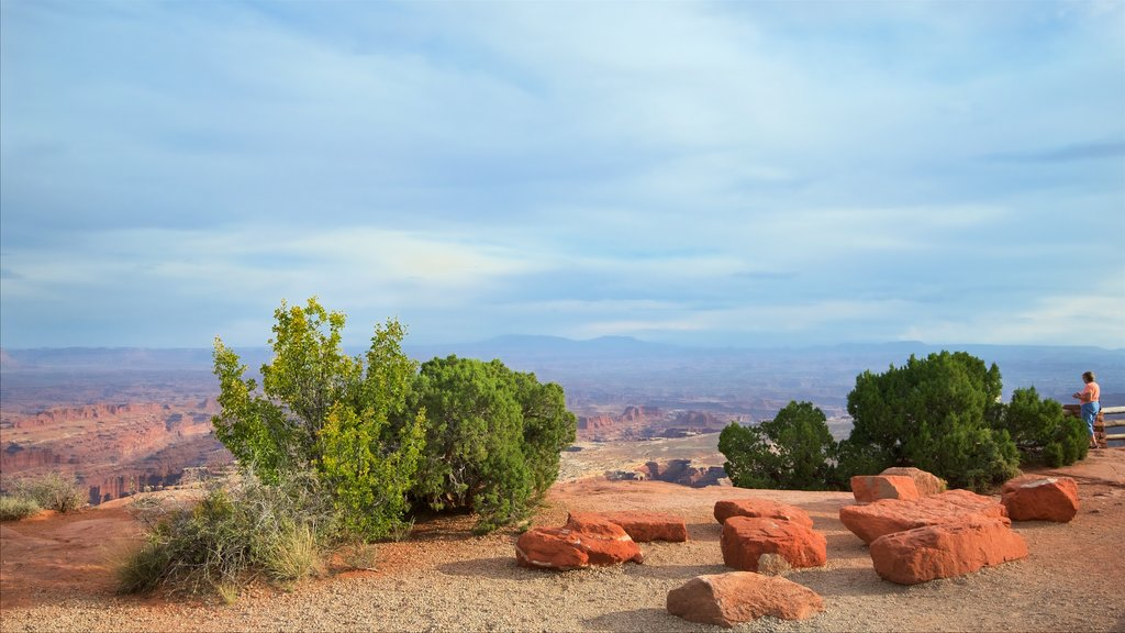 Grand View Point Trailhead showing landscape views, tranquil scenes and desert views