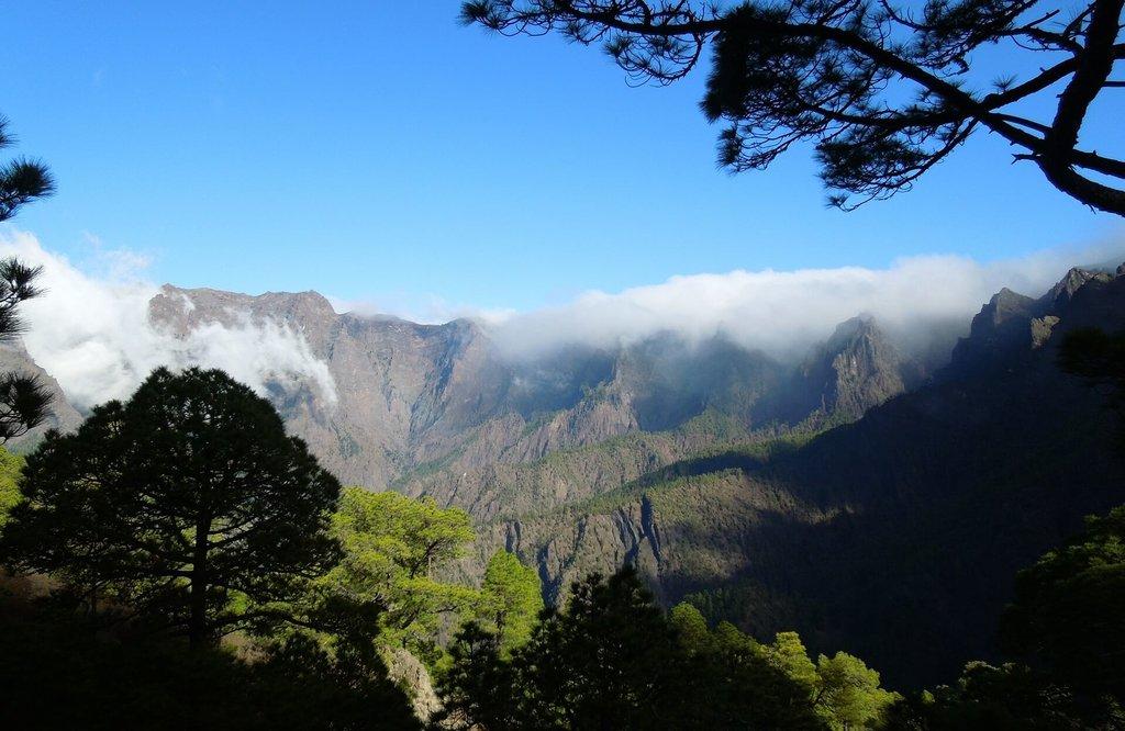 La Palma-Nature-Caroussel_Pixabay.jpg
