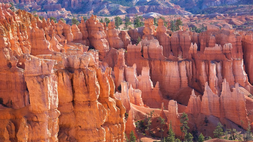 Bryce Canyon National Park showing tranquil scenes, a gorge or canyon and desert views