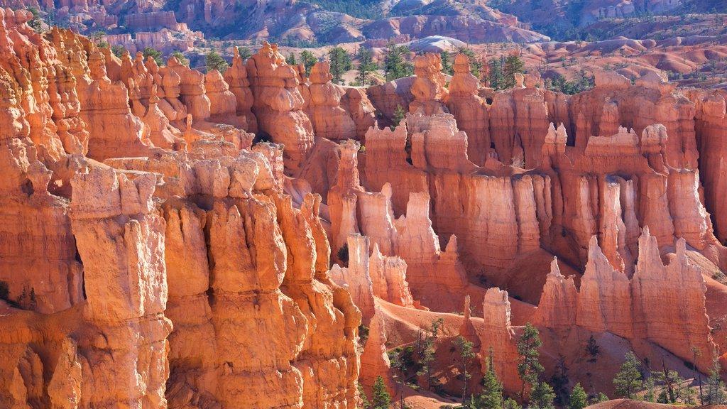 Bryce Canyon National Park que incluye escenas tranquilas, un barranco o cañón y vistas al desierto