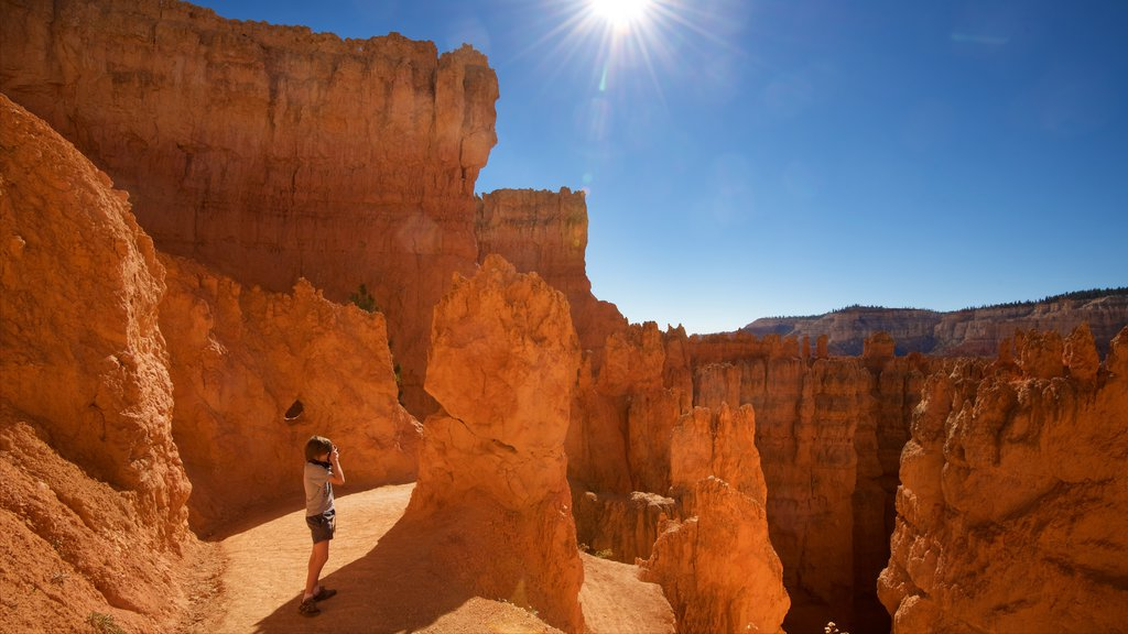 Bryce Canyon National Park ofreciendo un barranco o cañón, escenas tranquilas y vistas al desierto
