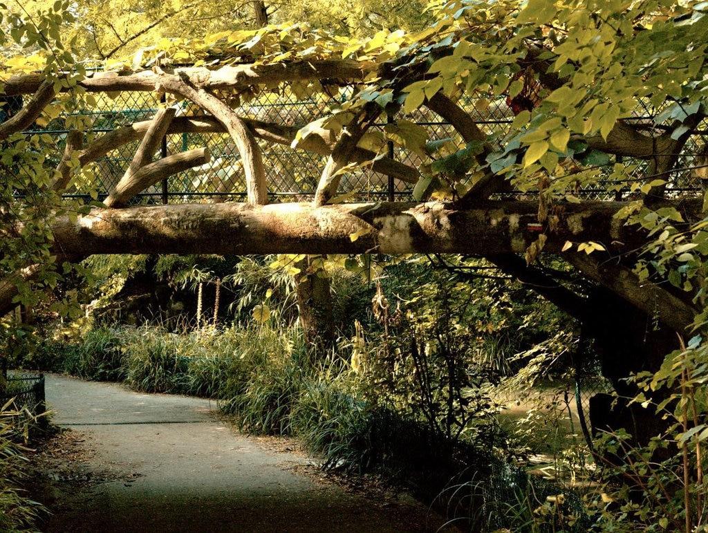 Jardin de la Nouvelle France - 75008 Pariscut.jpg