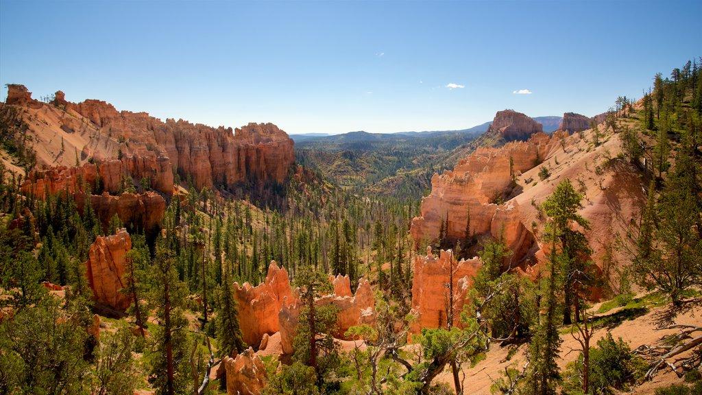 Bryce Canyon National Park que incluye escenas tranquilas, vistas al desierto y un barranco o cañón