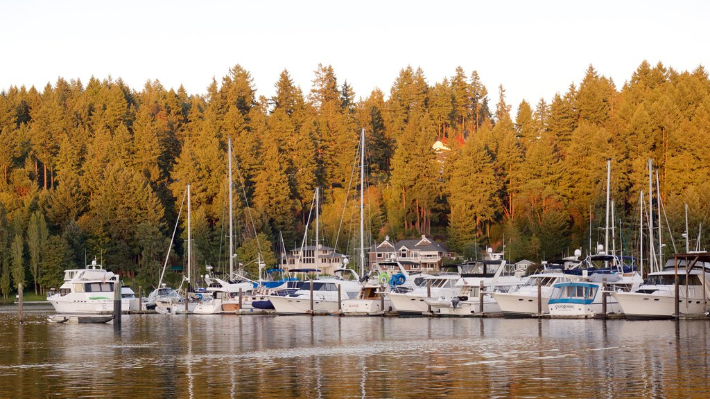 Gig Harbor showing forests, a bay or harbor and a marina