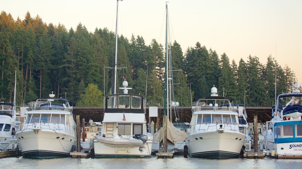 Gig Harbor featuring a marina, a bay or harbor and forests