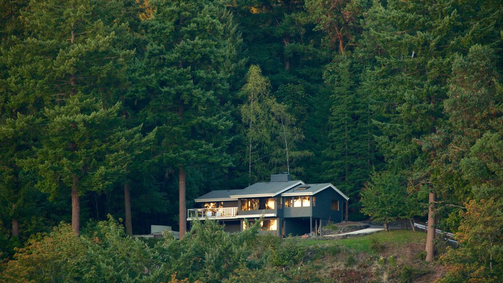 Gig Harbor featuring forests and a house
