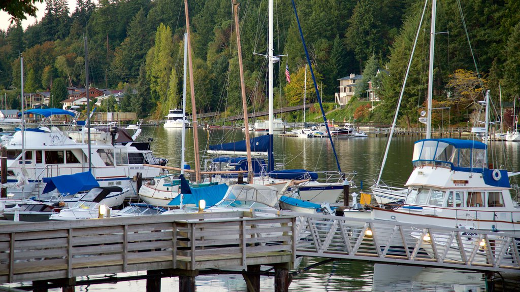 Gig Harbor featuring a marina, a bay or harbor and forest scenes