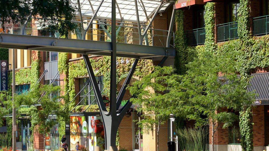Bellevue featuring street scenes and a bridge