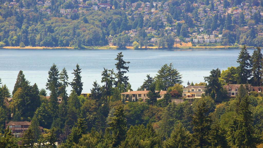 Bellevue which includes a lake or waterhole, forests and a house