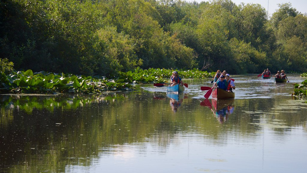 Bellevue which includes kayaking or canoeing and a river or creek as well as a small group of people
