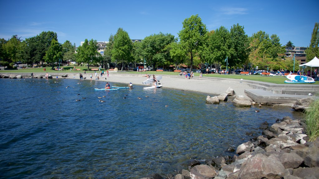 Marina Park which includes a park, a lake or waterhole and kayaking or canoeing