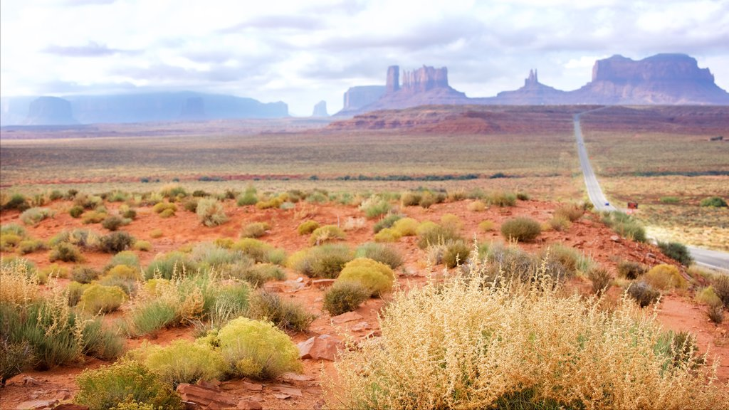Monument Valley showing a gorge or canyon, a sunset and desert views