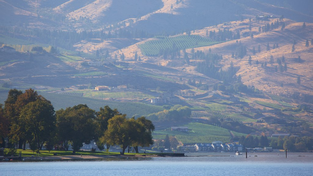 Lake Chelan showing a small town or village, tranquil scenes and a lake or waterhole