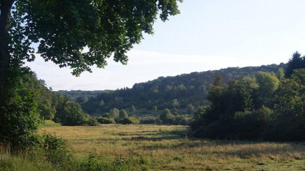 Burgundy_nature_Cote d'or_Flickr.jpg