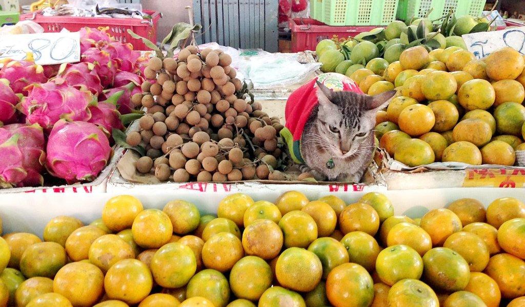 Bangkok_Shoppen_FoodMarket_Flickr.jpg