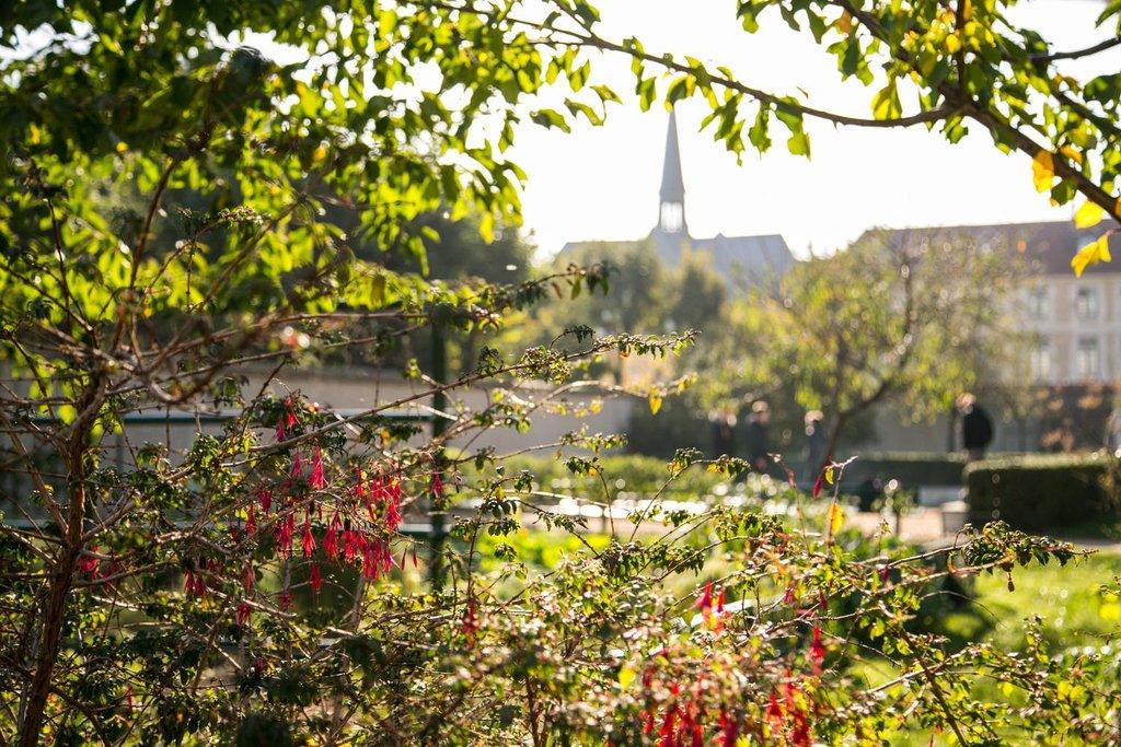 jardin catherine laboure.jpg