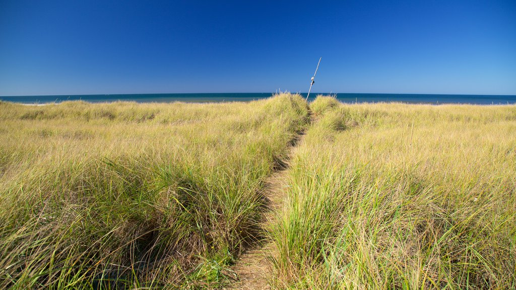 Ocean Shores Beach featuring general coastal views