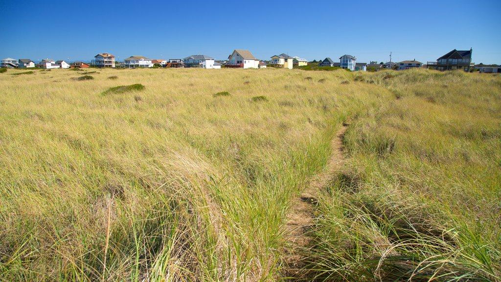 Ocean Shores Beach showing a coastal town