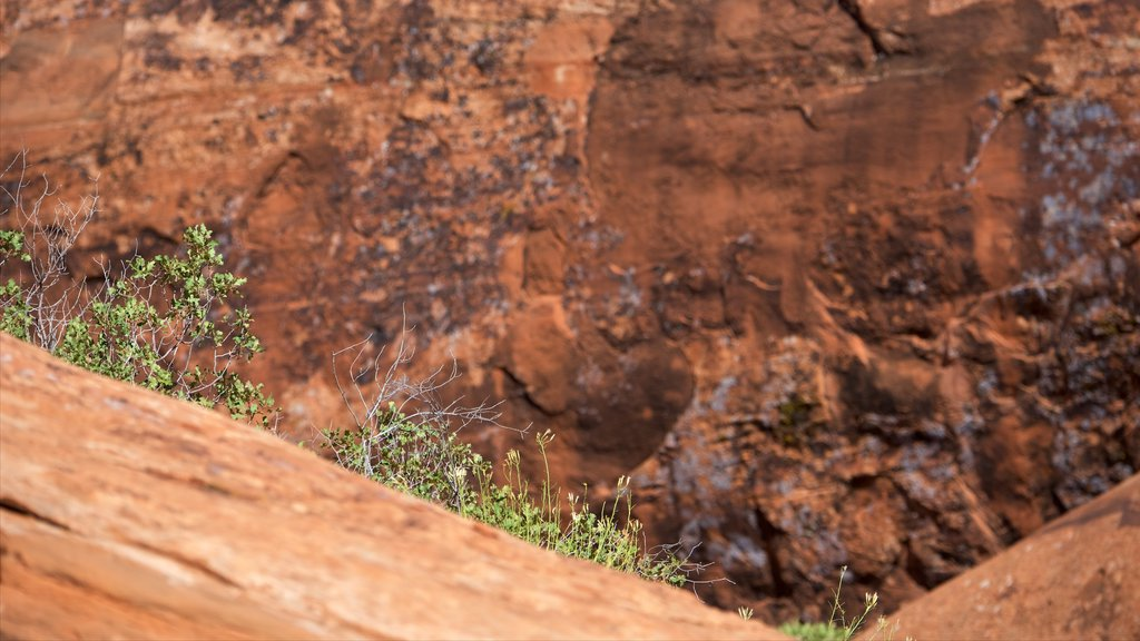 Moab featuring tranquil scenes