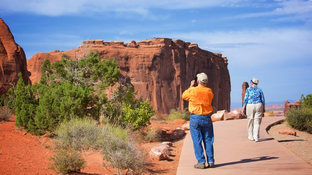 Park Avenue Trail which includes a gorge or canyon and desert views as well as a couple