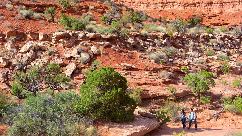 Moab featuring hiking or walking and tranquil scenes as well as a couple