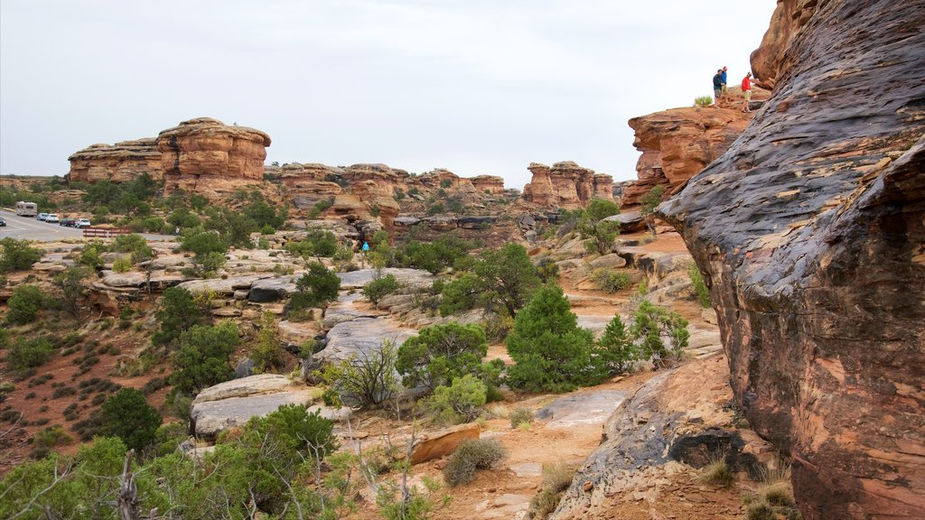 Moab which includes a gorge or canyon, hiking or walking and tranquil scenes
