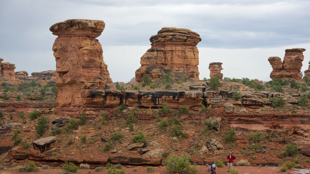 Moab featuring hiking or walking, tranquil scenes and a gorge or canyon
