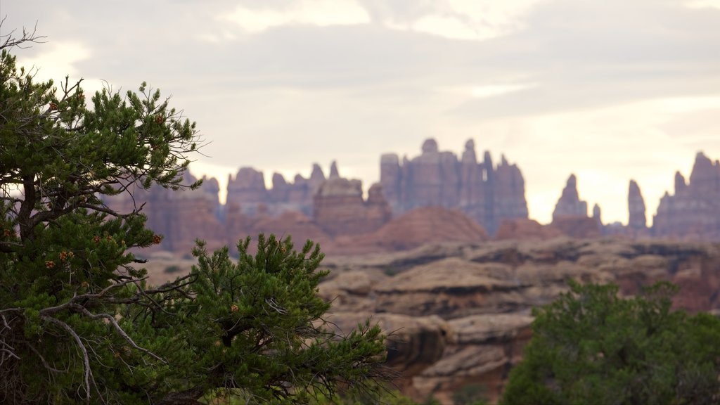 Moab which includes tranquil scenes and landscape views