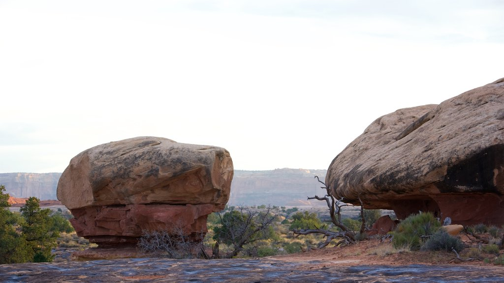 Moab which includes landscape views and tranquil scenes