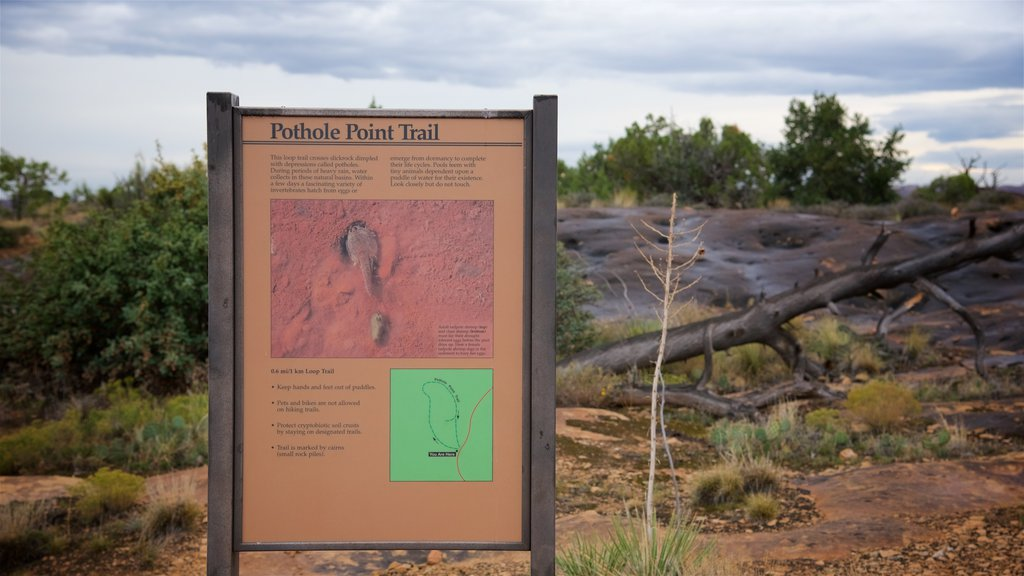 Moab showing hiking or walking, signage and tranquil scenes
