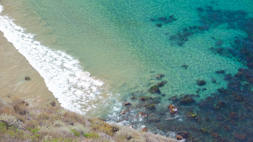 Channel Islands National Park featuring general coastal views and a sandy beach