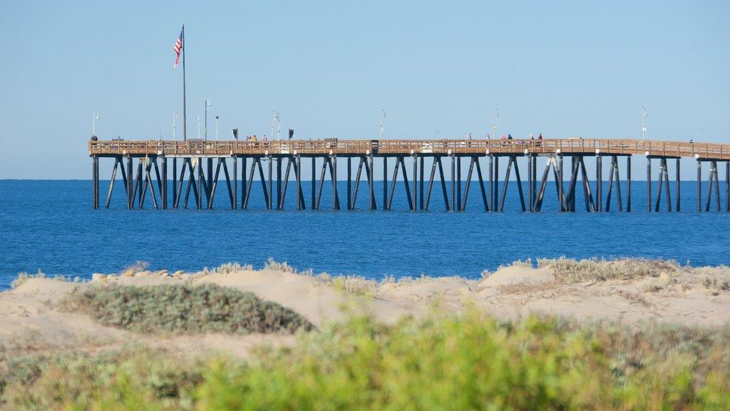 Ventura showing general coastal views