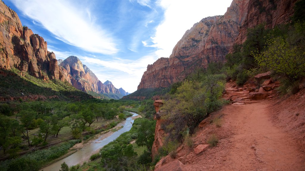 Zion National Park showing mountains, a gorge or canyon and tranquil scenes