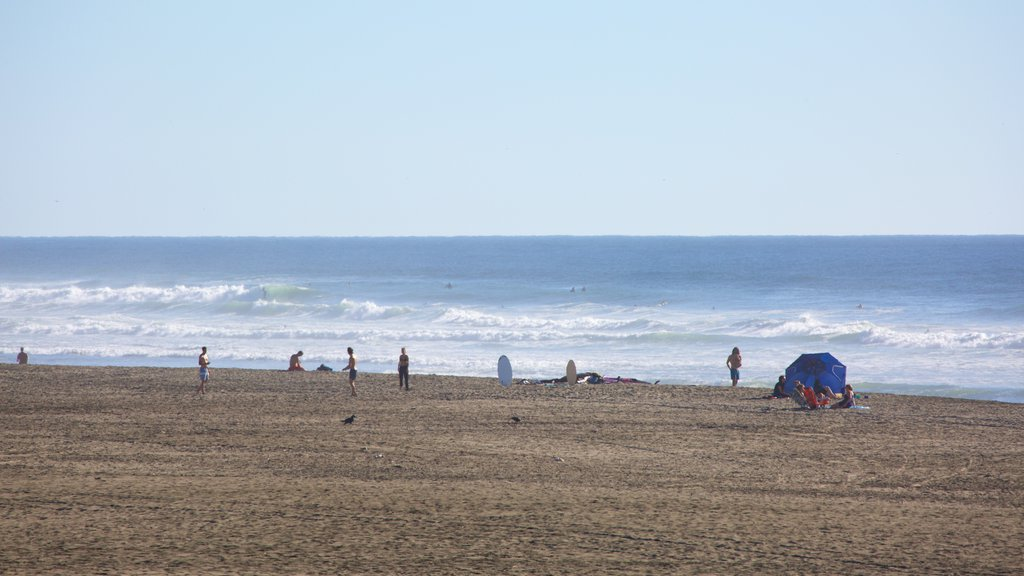 Ocean Beach featuring general coastal views, a beach and landscape views
