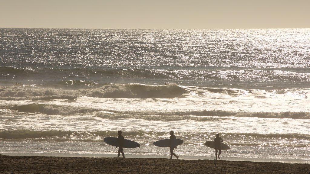 Ocean Beach showing a beach, general coastal views and surfing