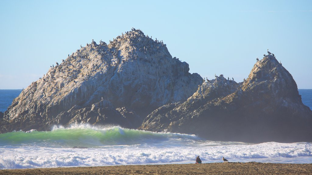 Ocean Beach which includes a sandy beach, rugged coastline and general coastal views