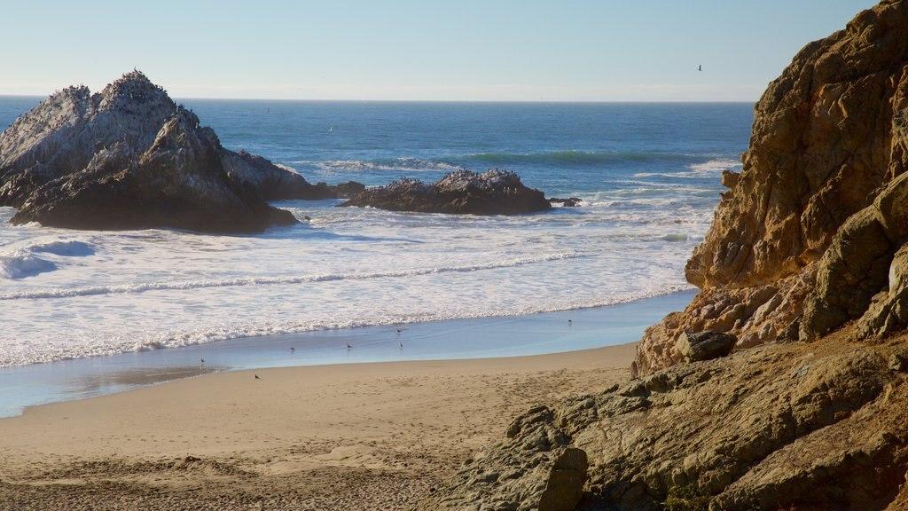 Ocean Beach which includes general coastal views, rugged coastline and landscape views