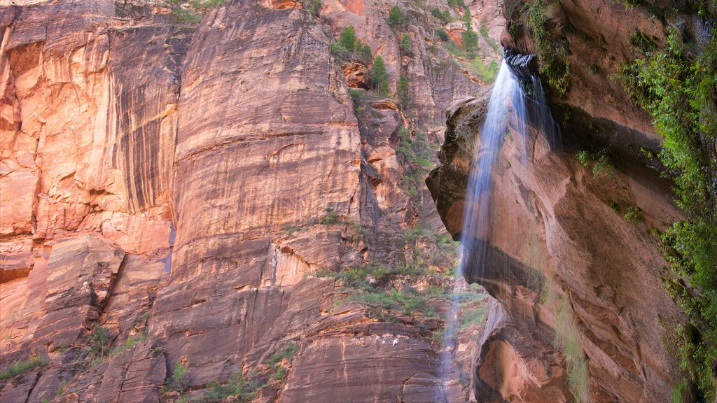 Emerald Pools which includes tranquil scenes and a waterfall