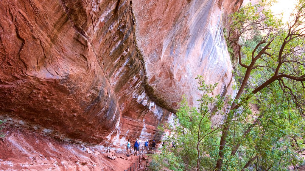 Emerald Pools which includes hiking or walking and tranquil scenes as well as a small group of people