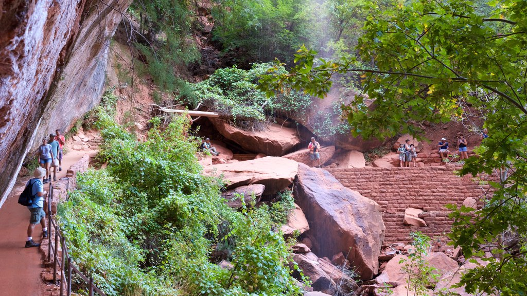 Emerald Pools which includes tranquil scenes and hiking or walking as well as a small group of people