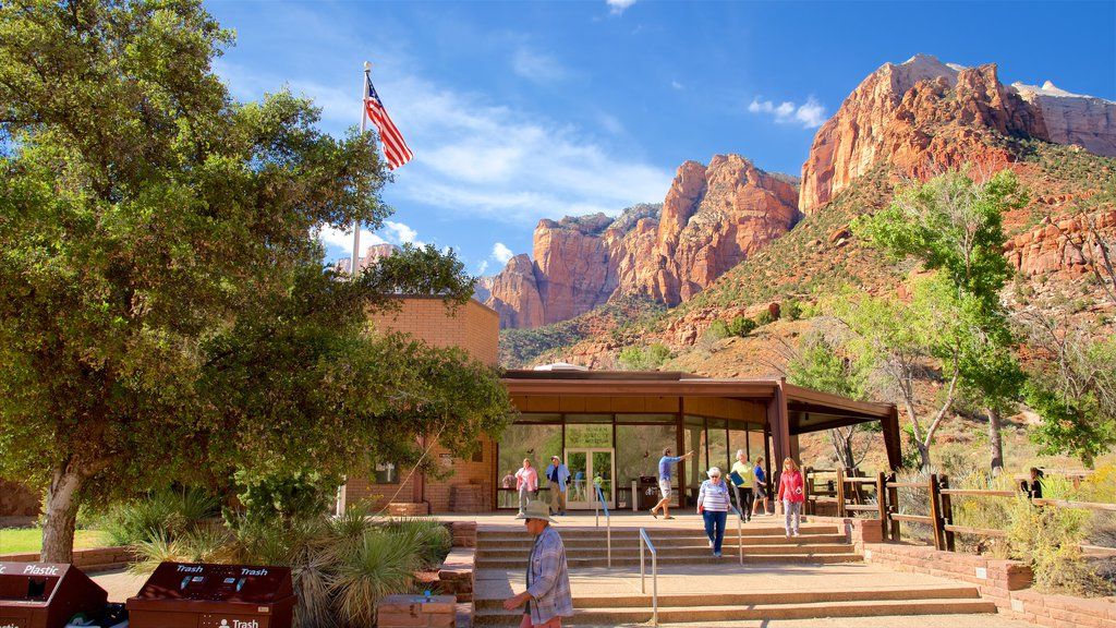 Zion Human History Museum which includes mountains