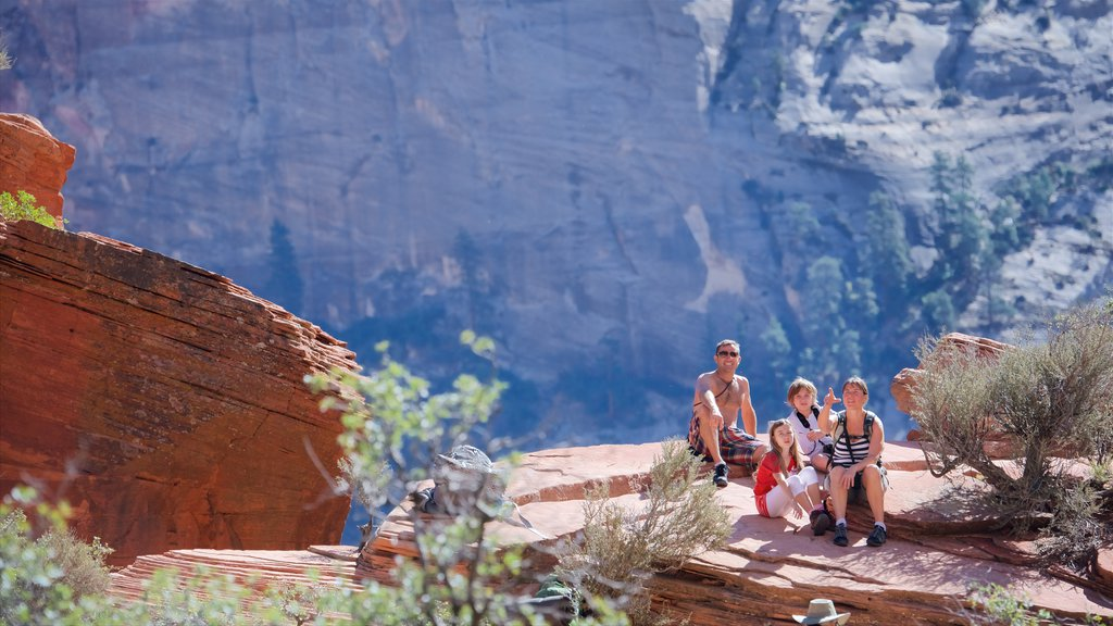Zion National Park featuring hiking or walking and tranquil scenes as well as a family