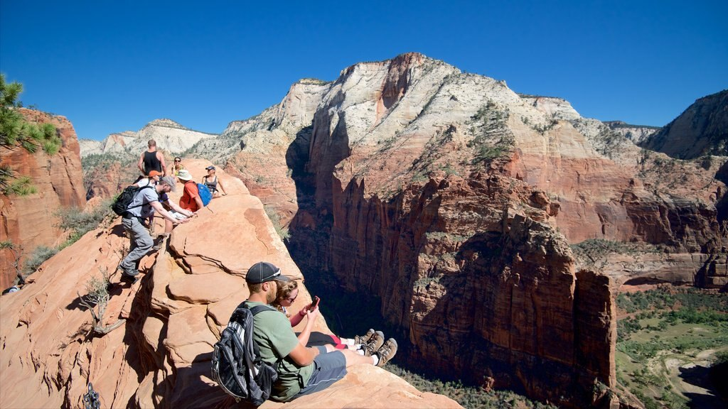 Zion National Park featuring tranquil scenes, hiking or walking and mountains