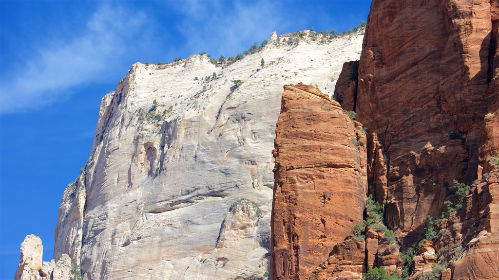 Zion National Park which includes tranquil scenes, mountains and landscape views